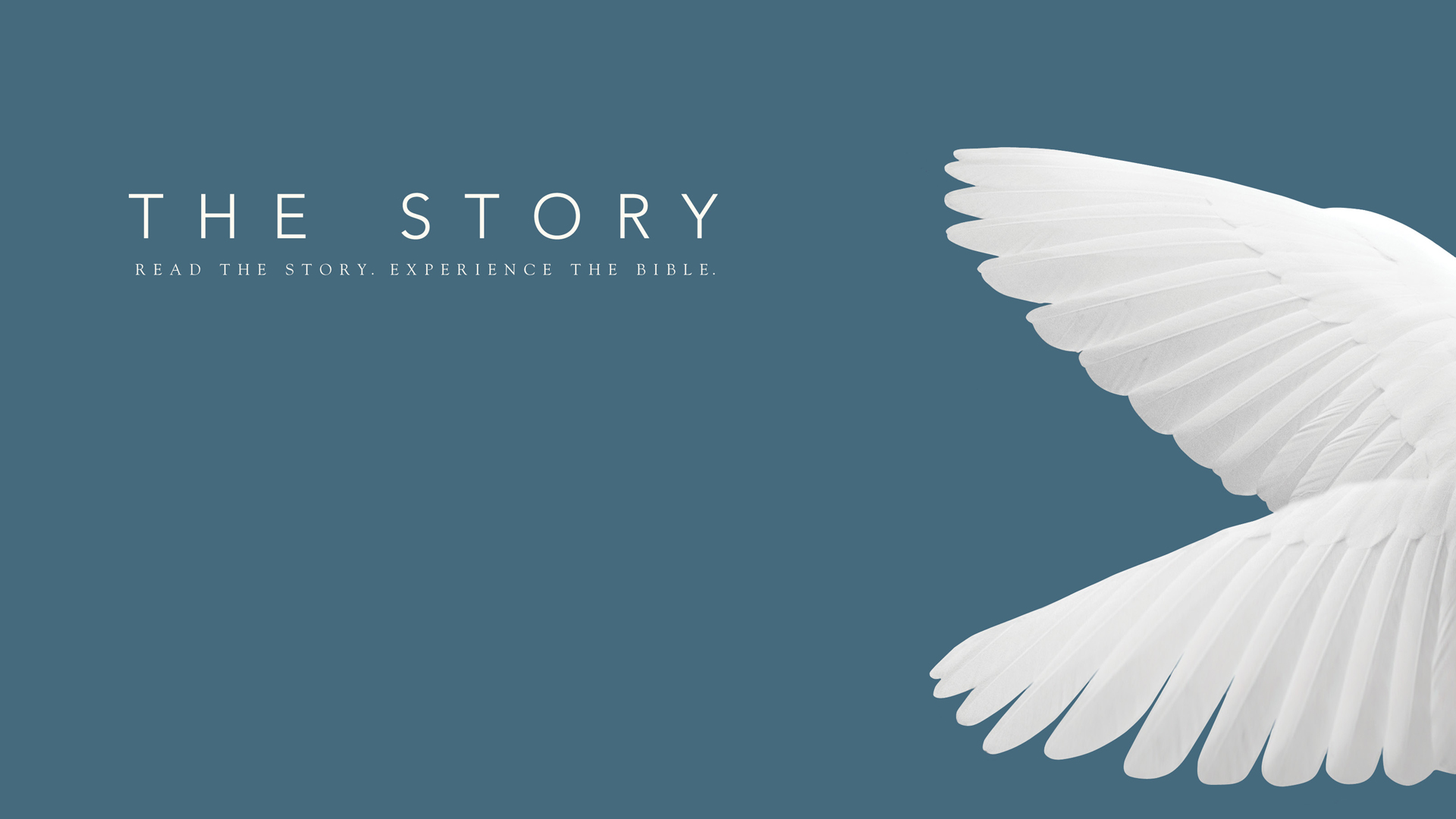 The Story (Week 23)