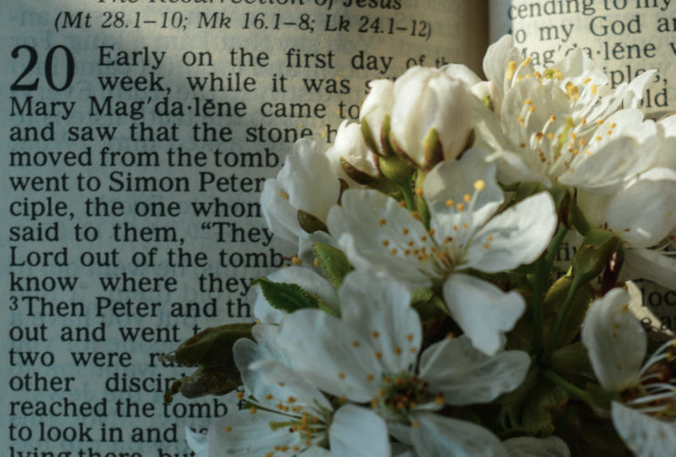 An Easter Reflection 2021